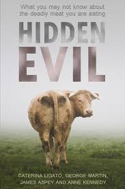 Hidden Evil by Caterina Ligato, George Martin, James Aspey, Anne Kennedy