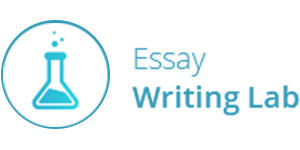 essay writing lab